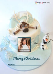 frozen-christmas-cake-with-name-and-photo